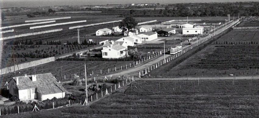 La station de San Giuliano en 1964