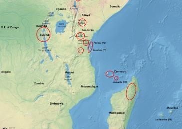 Afrique de l'Est sampling